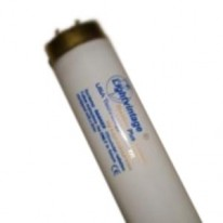 Лампа Lightvintage Special Line 26/180 WR XL (190 см)