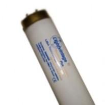 Лампа Lightvintage Premium Plus 24/200 WR XXL (200 см)