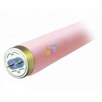 Лампа коллагеновая New Age by LightTech 180W 190 см